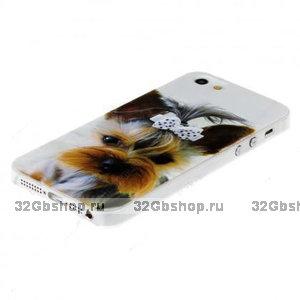 Чехол накладка для iPhone 5 / 5s / SE Собака 3D