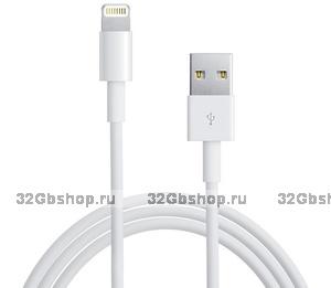 Кабель Lightning to USB для Apple iPhone 5 / 5s / 6 / 6s / 7 / 8 Plus / X / Xs / Xr / 11 - iPad Air / iPad mini